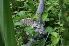 Lo Gnome che ostacola un segno ha intitolato la GIOIA fotografia stock