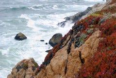 Costa de California en primavera con el océano Foto de archivo libre de regalías