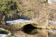 A lo largo del río Derwent Fotografía de archivo libre de regalías