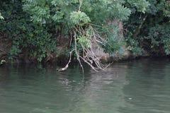 A lo largo del río Saone en Francia Fotografía de archivo