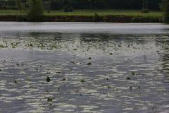 A lo largo del río Saone en Francia Fotos de archivo libres de regalías