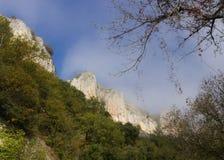 A lo largo del valle de la porción del río Fotografía de archivo libre de regalías