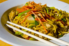 Lo Mein in Bowl Stock Images