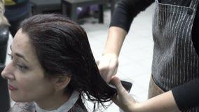lo Parrucchiere-stilista pettina la ragazza orientale del pettine bagnato dei capelli che si siede nel negozio di barbiere e nell video d archivio