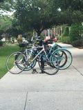 Lo scaffale della bici Immagini Stock