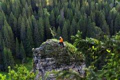 Lo scalatore sta preparando discendere dalla scogliera Fotografie Stock Libere da Diritti