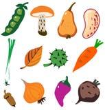 Lo scarabocchio delle verdure ha disegnato la raccolta Immagini Stock Libere da Diritti