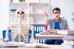 Lo scheletro dello studente che ascolta la conferenza in aula Immagini Stock