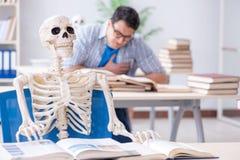 Lo scheletro dello studente che ascolta la conferenza in aula Fotografie Stock Libere da Diritti