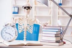 Lo scheletro dello studente che prepara per gli esami Fotografia Stock Libera da Diritti