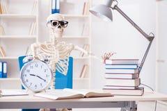 Lo scheletro dello studente che prepara per gli esami Immagini Stock Libere da Diritti