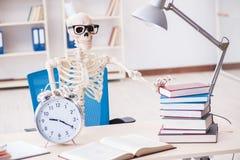 Lo scheletro dello studente che prepara per gli esami Immagini Stock