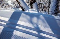 Lo sci Snowcapped della strada segue il primo piano Immagini Stock