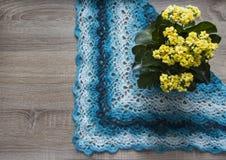 Lo scialle di bactus di giallo di kalandiva del fiore dell'albero del fondo ha lavorato all'uncinetto il filato acrilico-lana mer Fotografie Stock Libere da Diritti
