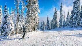 Lo sciatore della donna che gode del paesaggio dell'inverno sullo sci pende Fotografie Stock Libere da Diritti