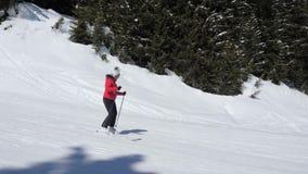 Lo sciatore della donna va giù su Ski Slope Among Pine Forest stock footage