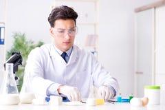 Lo scienziato dell'alimento che prova nuova roba in laboratorio Fotografia Stock