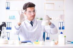 Lo scienziato dell'alimento che prova nuova roba in laboratorio Fotografie Stock