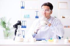 Lo scienziato dell'alimento che prova nuova roba in laboratorio Fotografia Stock Libera da Diritti