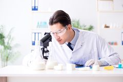 Lo scienziato dell'alimento che prova nuova roba in laboratorio Immagini Stock