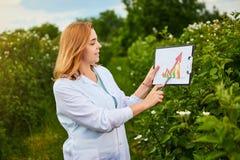 Lo scienziato della donna che lavora nel giardino della frutta e mostra il livello di crescita del raccolto facendo uso del infog fotografie stock libere da diritti