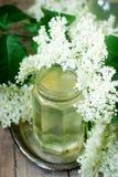 Lo sciroppo casalingo della bacca di sambuco fiorisce nei rami dell'anziano e di un barattolo di vetro su uno stile rustico della immagine stock