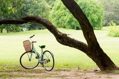 Lo scoiattolo e l'annata vanno in bicicletta nel parco verde Fotografia Stock Libera da Diritti