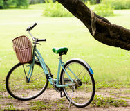 Lo scoiattolo e l'annata vanno in bicicletta nel parco verde Immagine Stock