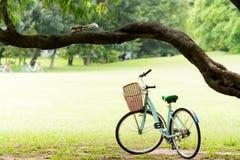 Lo scoiattolo e l'annata vanno in bicicletta nel parco verde Fotografia Stock