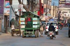 Lo scuolabus è carretto di manzo con gli scolari sulla strada in Vrindavan Fotografia Stock