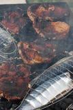 Lo sgombro arrostente col barbecue e la carne rossa su carbone infornano l'immagine del primo piano Immagine Stock Libera da Diritti