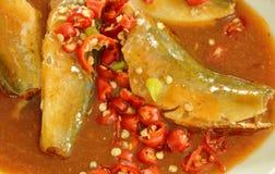 Lo sgombro in ketchup può peperoncino rosso della fetta della guarnizione dell'alimento sul piatto Fotografia Stock Libera da Diritti