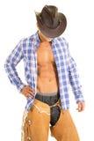 Lo sguardo blu della camicia di plaid del cowboy giù affronta nascosto Immagine Stock Libera da Diritti