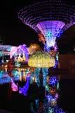 Lo Sha Tin Festive Lighting 2016 fotografia stock libera da diritti