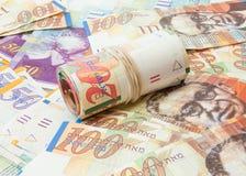 Lo shekel israeliano nota il fondo Immagini Stock Libere da Diritti