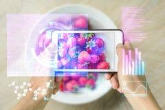 Lo Smart Device ha aumentato il controllore dell'alimento della realtà Fotografia Stock Libera da Diritti