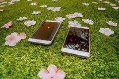 Lo Smart Phone delle coppie sulla terra Immagini Stock