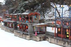 Lo snowscape del palazzo di estate Immagini Stock
