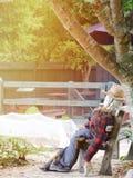 Lo spaventapasseri stanco o il prestanome si siede sulla sedia in azienda agricola Fotografia Stock