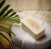 Lo speciale sfrega il sapone sulla stazione termale messa per pelle sana Fotografia Stock Libera da Diritti