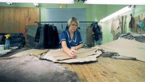 Lo specialista femminile sta misurando un pezzo di pelle coperta di pelo con una curva archivi video
