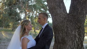 Lo sposo abbraccia la sposa in un parco nel sole stock footage