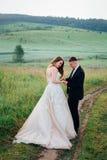 Lo sposo aiuta la sposa a fare un passo sulla strada del campo immagine stock