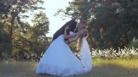 Lo sposo felice tiene in armi e bacia la sua sposa archivi video