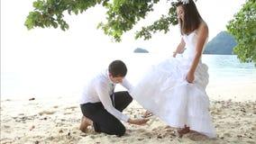 lo sposo mette la scarpa sulla sposa dai capelli lunghi sotto l'albero sulla spiaggia stock footage