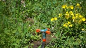 Lo spruzzatore automatico irriga le piante ed i fiori nel giardino un giorno soleggiato, movimento lento stock footage