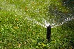 Lo spruzzatore automatico nell'azione, l'acqua del prato inglese del giardino spruzza, innaffiando l'erba immagine stock libera da diritti