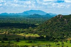 Lo Sri Lanka abbellisce il fondo della natura Fotografie Stock Libere da Diritti