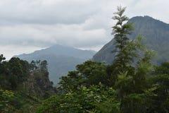Lo Sri Lanka, Ella, poco picco di Adams, montagne fotografie stock