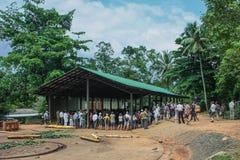 Lo Sri Lanka, novembre 2011. Elefante Orphanag di Pinnawala. Fotografie Stock